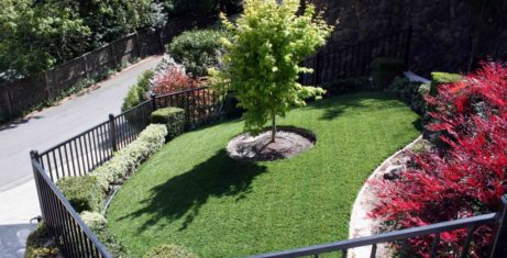 Add Beauty to Your Yard and Forget the Maintenance